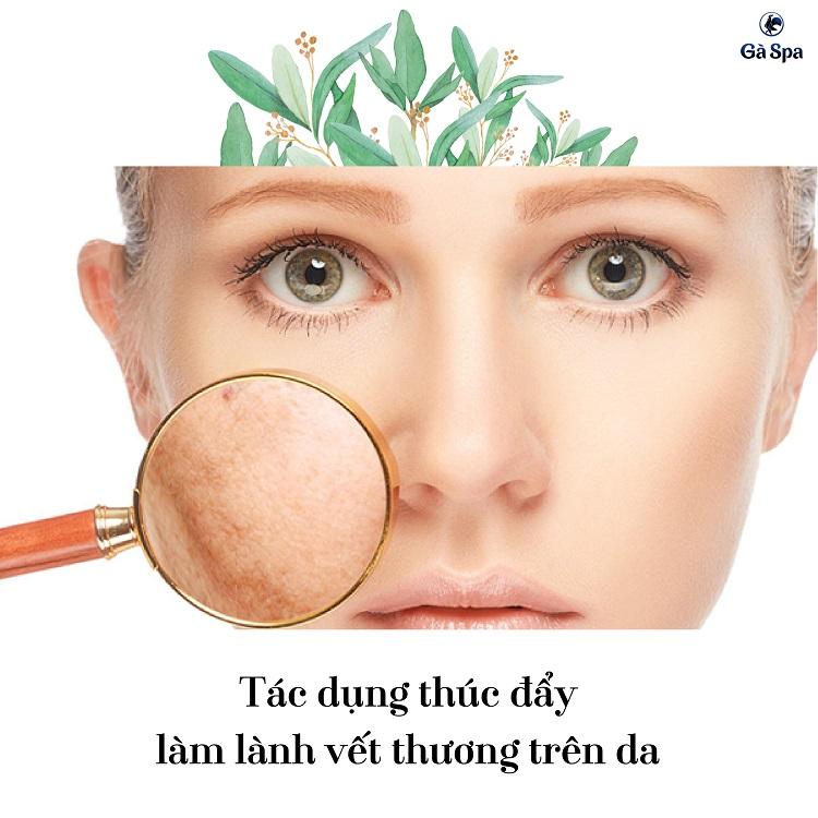 Tác dụng thúc đẩy làm lành vết thương trên da của vitamin A